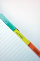 Close-up of colored tabs of a personal organizer