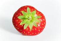 Strawberry (Fragaria sp.).