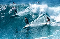 Surfing. Maui island. Hawai