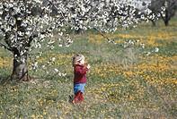 Girl (2-3) walking in flower field, side view