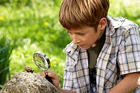Boy (6-8) looking at snail through magnifying glass