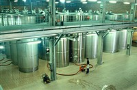 Fermentation tanks. Chandon winery. Sant Cugat de Sesgarrigues, Barcelona province, Catalonia, Spain