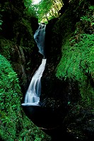 Ess-na-Larach Waterfall Glenariff Forest Park County Antrim Northern Ireland