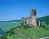 Vineyards, Bernkastel Castle and Mosel River, Bernkastel, Mosel Valley, Rhineland, Germany