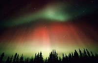 Aurora Borealis or Nothern Lights. Denali National Park. Alaska. USA