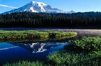 Mt. Rainier in summer. Washington, USA