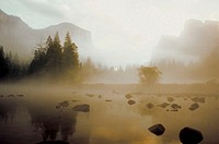Fog over a lake, Yosemite National Park, Mariposa County, California, USA