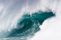 Ocean wave, Hawaii. USA