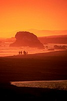 USA, California, Silhouette of a beach