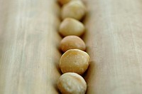 Macadamia nuts, close-up