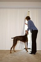 Woman with doberman looking out of blinds