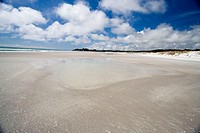 new zealand, north island, great exhibition bay, rarawa beach
