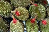 Durian fruits. Kuala Lumpur market. Malaysia.