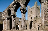 Jerpoint Abbey (1158). Co. Kilkenny. Ireland.