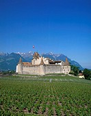 Chateau, Vineyards, Chateau Aigle, Vaud, Switzerland, Europe, Europe
