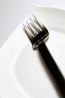 Close-up of a fork and a plate