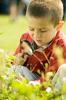 Close-up of a boy looking at a plant through a magnifying glass