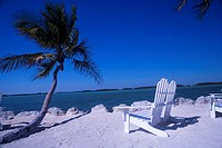 Adirondack chairs on the beach near a palm tree, Miami, Florida, USA