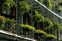 Low angle view of hanging baskets on a building, New Orleans, Louisiana, USA