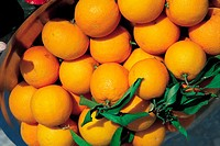 Tunisia, Basket of clementines
