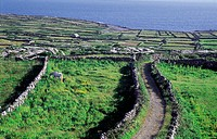 Ireland, Aran Islands, Inishmore, landscape