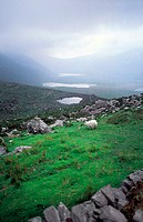 Ireland, Dingle, Connor pass