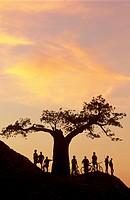 Biking Safari, Mashatu Reserve, Tuli, Botswana