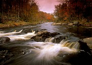Fall-Colors-near-Copper-Rock-Falls,-Grass-River,-St.-Lawrence-Co.,-Adirondacks,-NY,-New-York