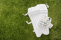 Cricket gloves and shin pads