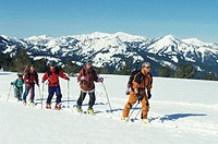 Five skiers walking uphill