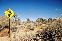 Road sign in a desert