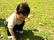Young boy squatting down playing with dry leaves.