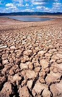 Agriculture. Drought. Cracked earth. Empty dam