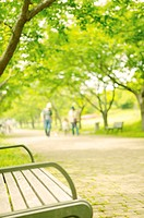 Park bench with people walking in background