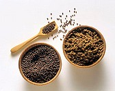 Mustard seeds and Garam Masala (spice mixture)