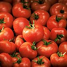 Tomatoes (filling the picture)