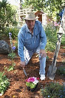 Portrait of a mature man gardening (thumbnail)