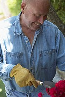 Close-up of a mature man gardening