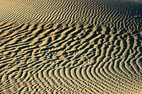 Mesquite Sand Dunes, Death Valley NP. California. USA