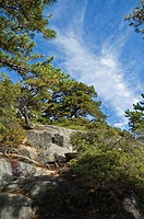 Acadia Mtn Trail, Acadia National Park, Maine, USA