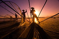 Legrower fisherman set conical traps as the setting sun reflects on Inle Lake, Shan State, Myanmar (Burma)