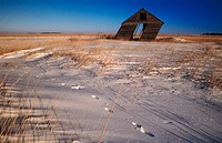 Old  shack leaning in winter. Manitoba, Canada