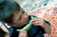 A little boy is eating a piece of melon in the garden (thumbnail)