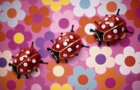 Chocolate Beetles, lady birds, on a coloured ground