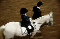 A little child, 5-10 years old, riding a horse at a horse show, the horse is leaded by an adult