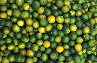LEMON<BR>Limes.