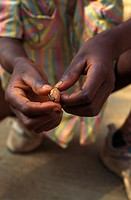 AN AFRICAN SCENE<BR>Child peeling a nut, Togo.