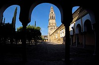 Alminar Tower, once minaret of Great Mosque of Cordoba, seen from the Patio de los Naranjos. Andalusia, Spain