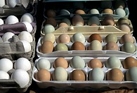 Madison, Wisconsin, United States. Fresh farm eggs are on display at a farmers market in Madison, WI.