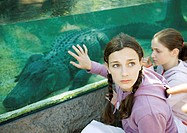 Teen girl touching glass aquarium containing alligator